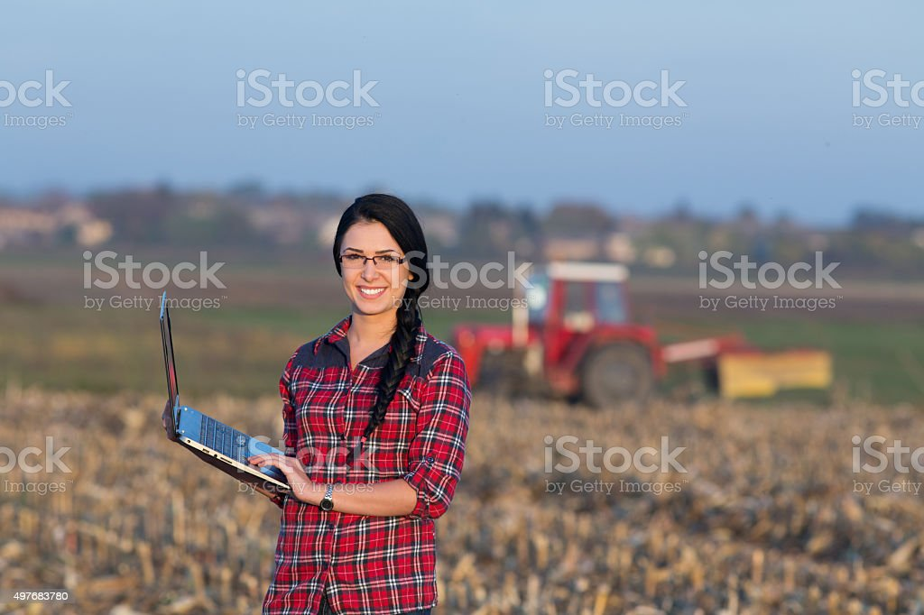 Woman with laptop in the field stock photo