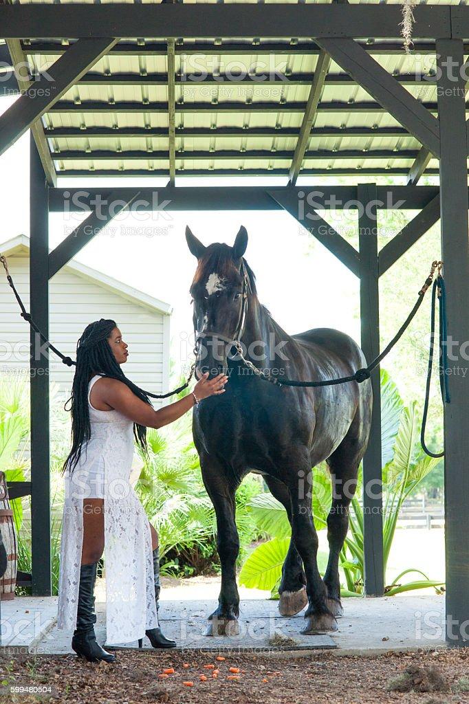 Woman with Percheron horse stock photo