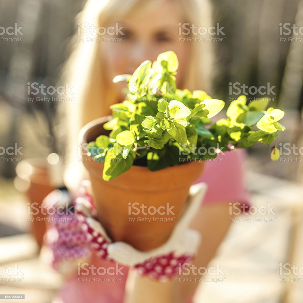 Woman with plant royalty-free stock photo