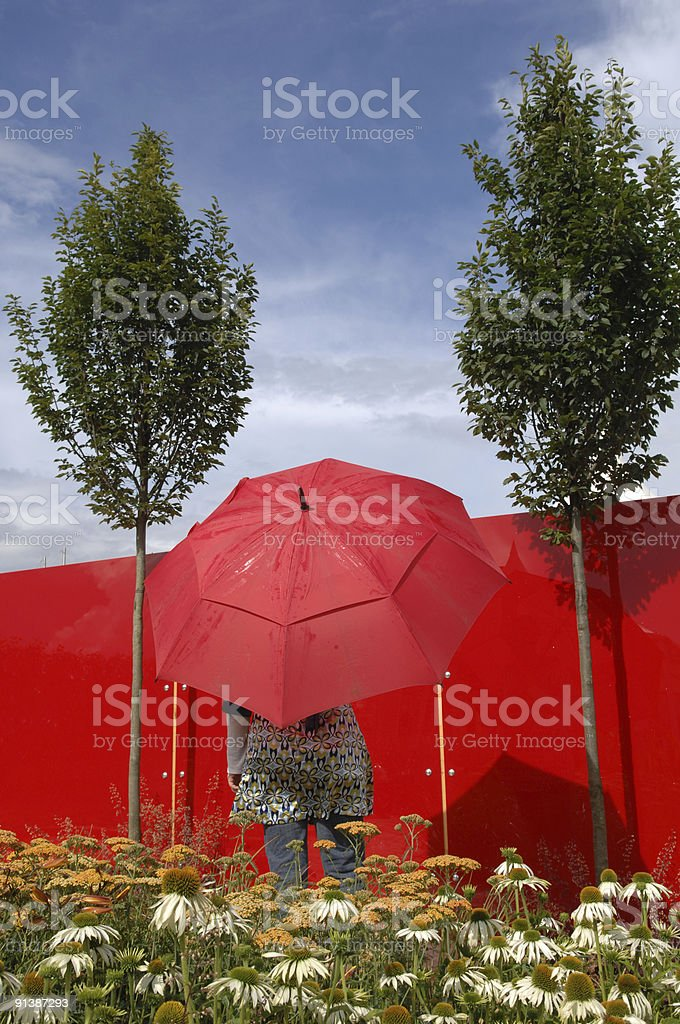 Woman with red umbrella in a garden of daisies royalty-free stock photo