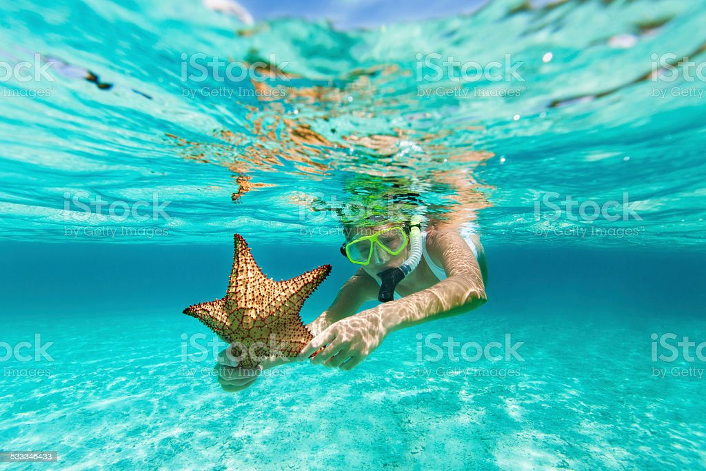 woman with snorkel and mask holding a starfish stock photo