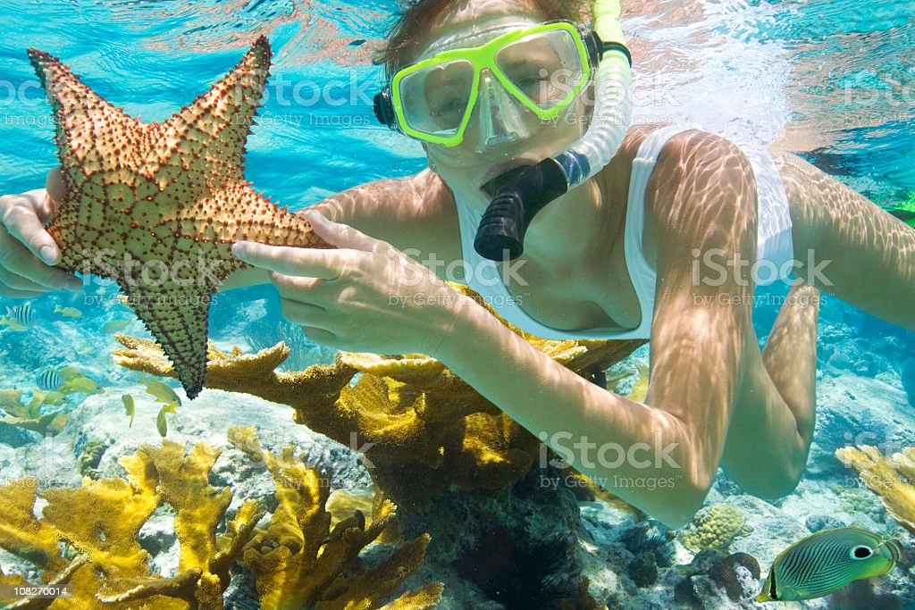 woman with starfish snorkeling in the Caribbean stock photo