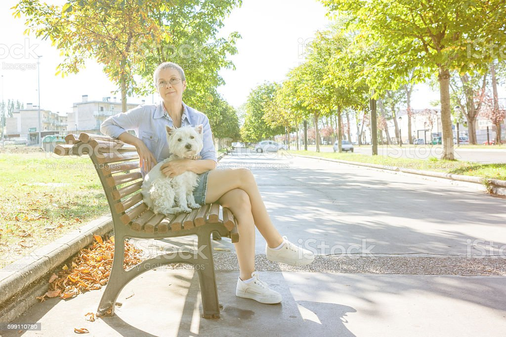 Woman with the dog on the bench stock photo