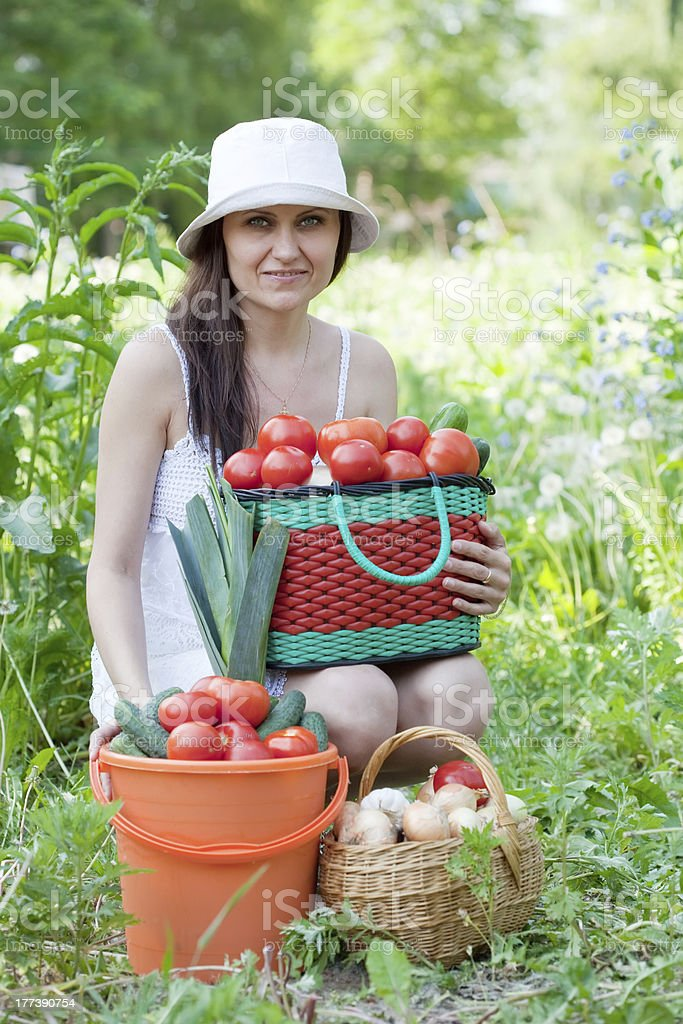 woman with vegetables harvest royalty-free stock photo