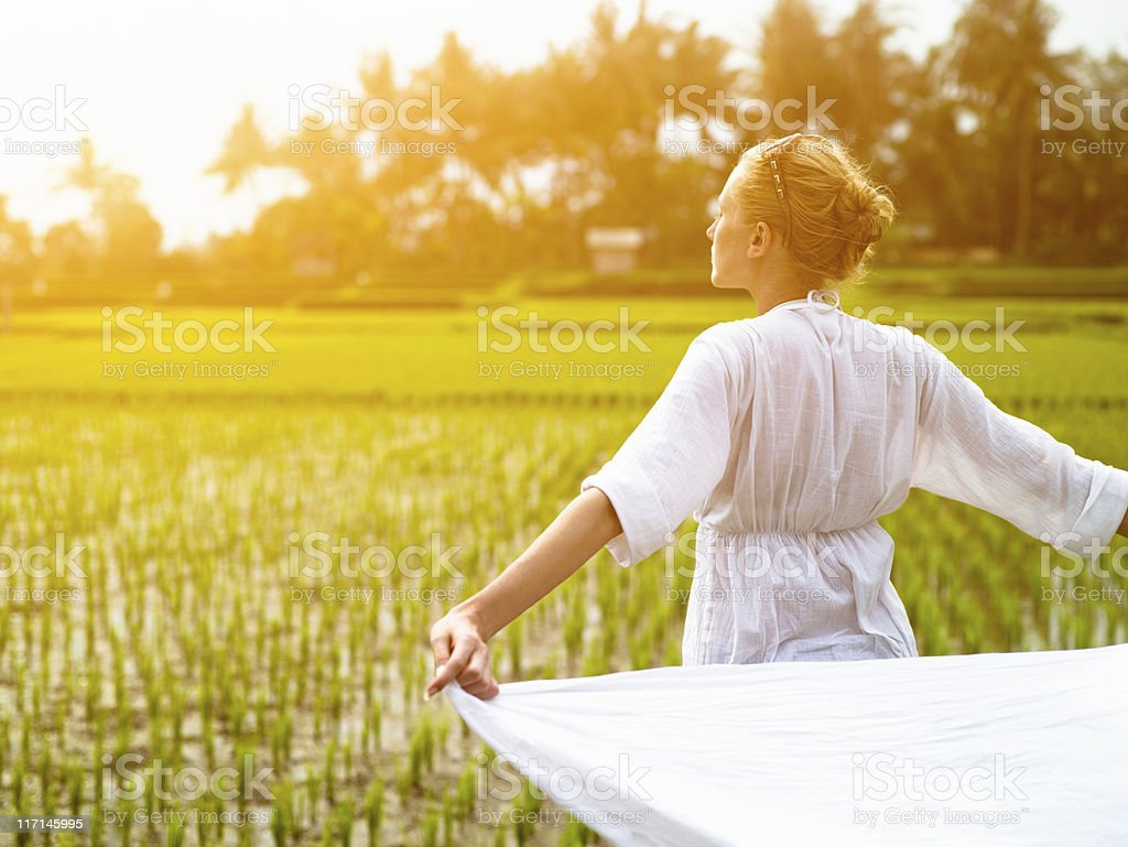 Woman with white cloth in the rice field royalty-free stock photo