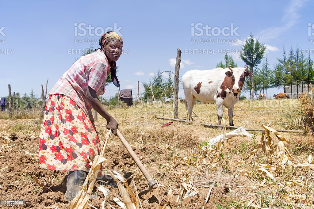 Woman Working Garden in Africa royalty-free stock photo