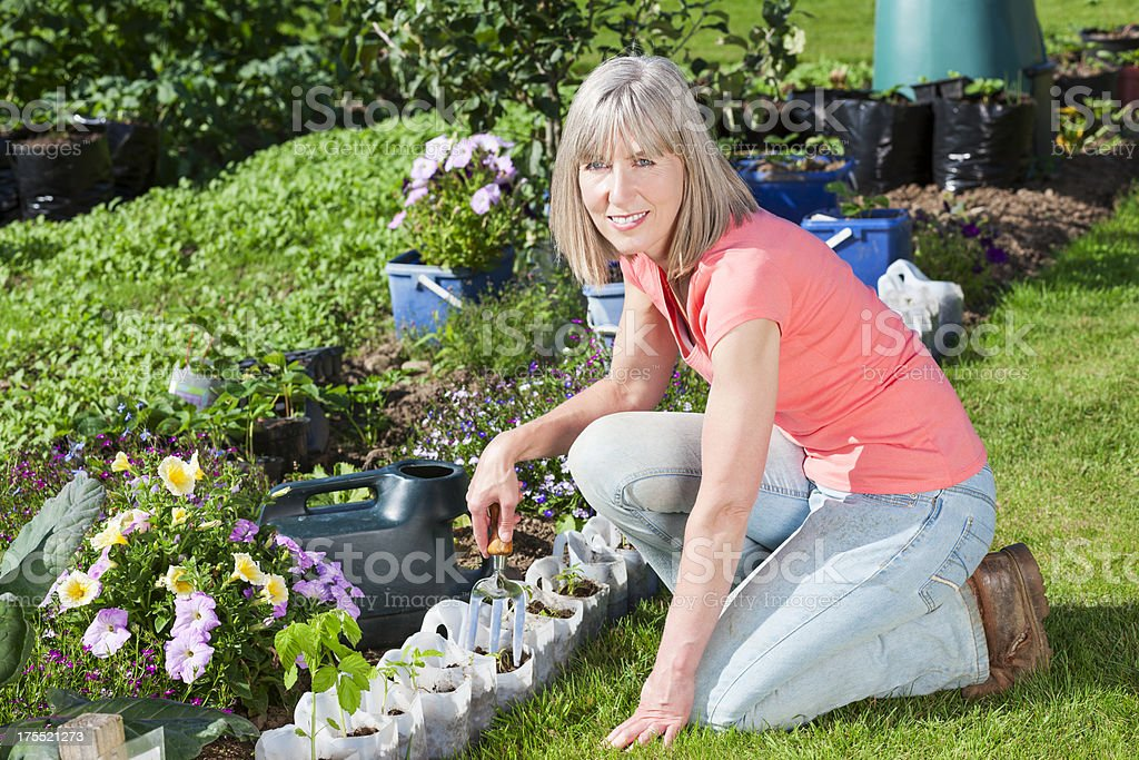 Woman working in a community garden royalty-free stock photo