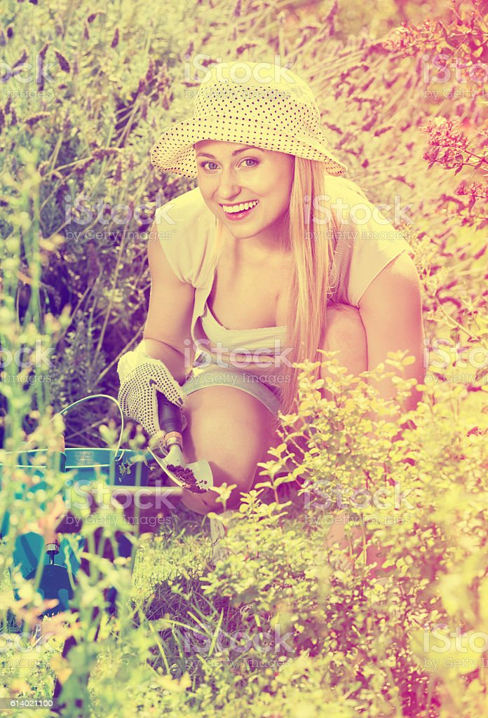 Woman working in garden using horticultural instruments on summe stock photo