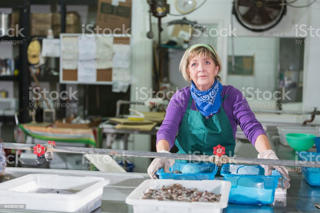 Woman working in seafood processing plant stock photo