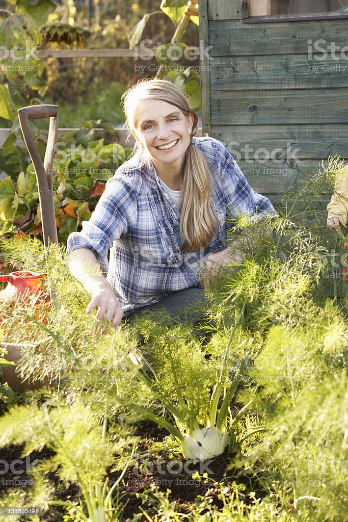 Woman working on allotment royalty-free stock photo