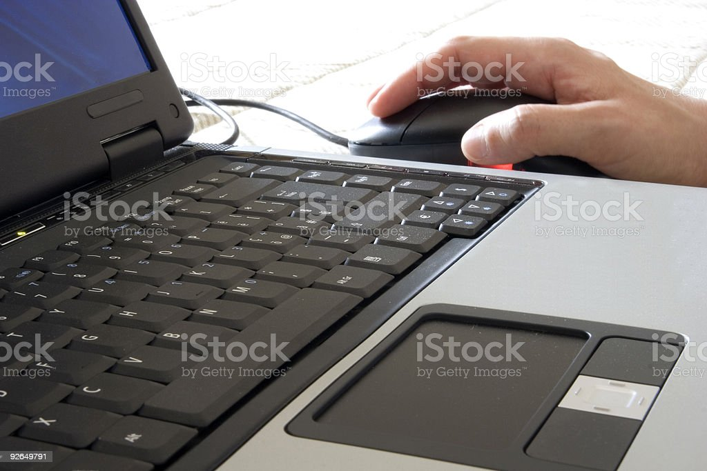 Woman Working With a Laptop, Business Concept royalty-free stock photo