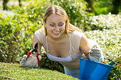 Woman working with green bush using horticultural tools