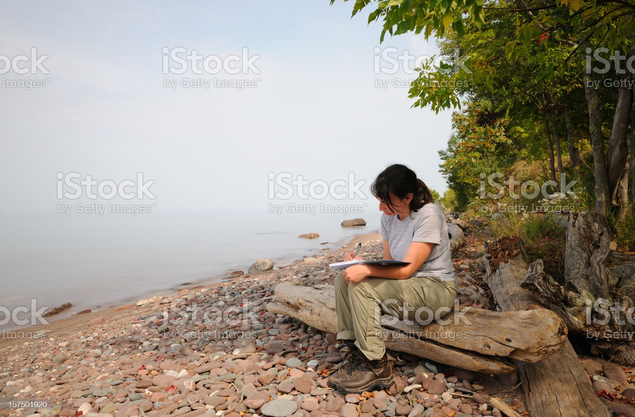 Woman Writing on Quiet Shoreline royalty-free stock photo