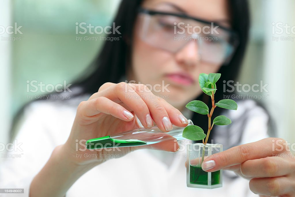 Woman-biologist in laboratory royalty-free stock photo