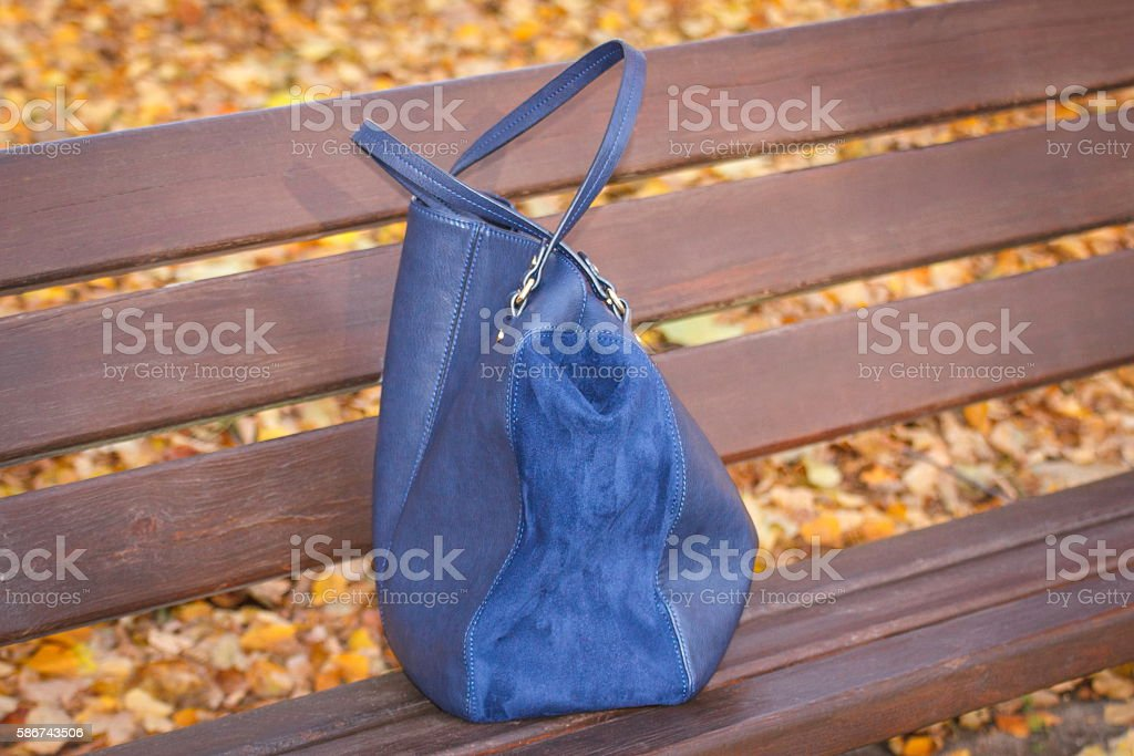 Womanly handbag on bench in autumn park stock photo