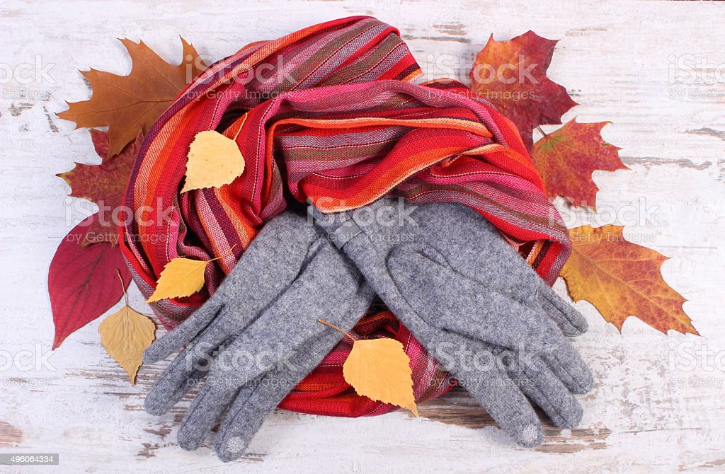Womanly woolen clothes and autumnal leaves on old wooden background stock photo