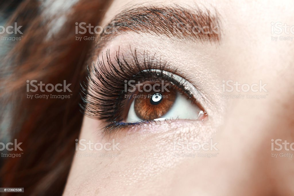 woman's brown eye stock photo