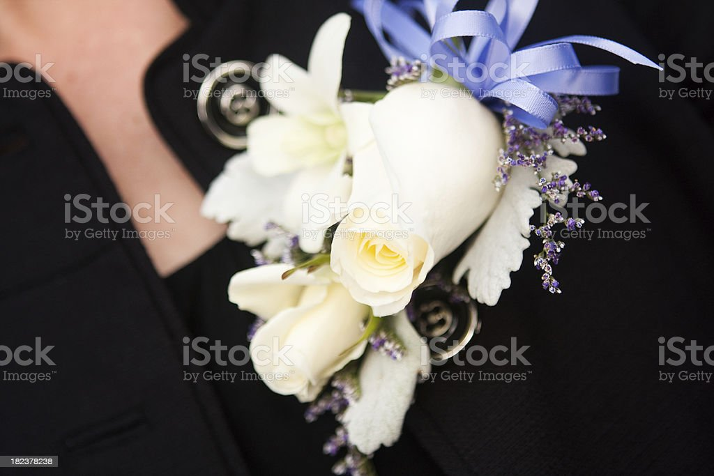 Woman's Corsage royalty-free stock photo
