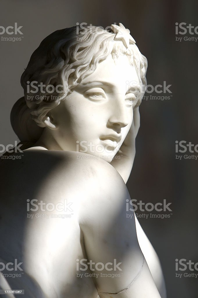 Woman's Face royalty-free stock photo