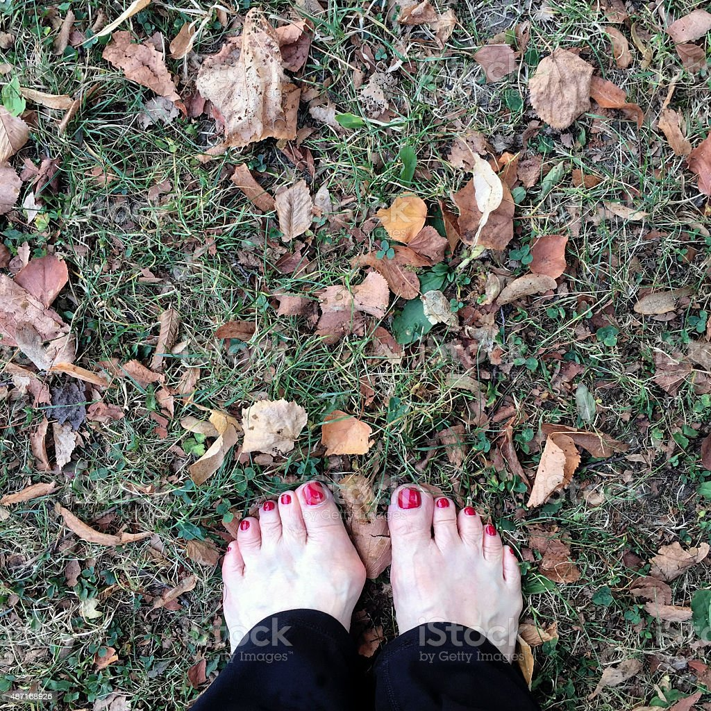 Woman's Feet on Grass with Leaves stock photo