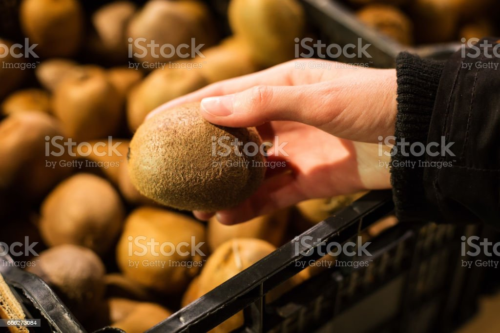 Woman's hand holding kiwi on a lot of blurred kiwi in basket background stock photo