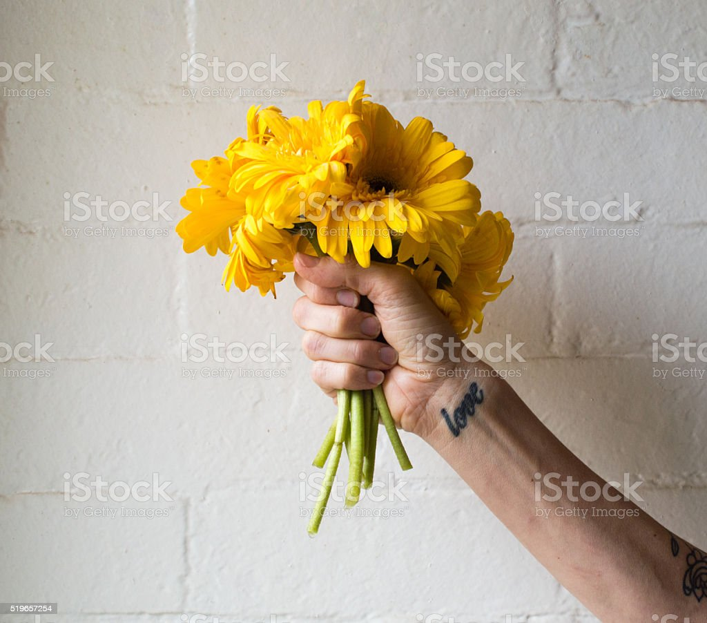 Woman's hand holding yellow gerberas stock photo