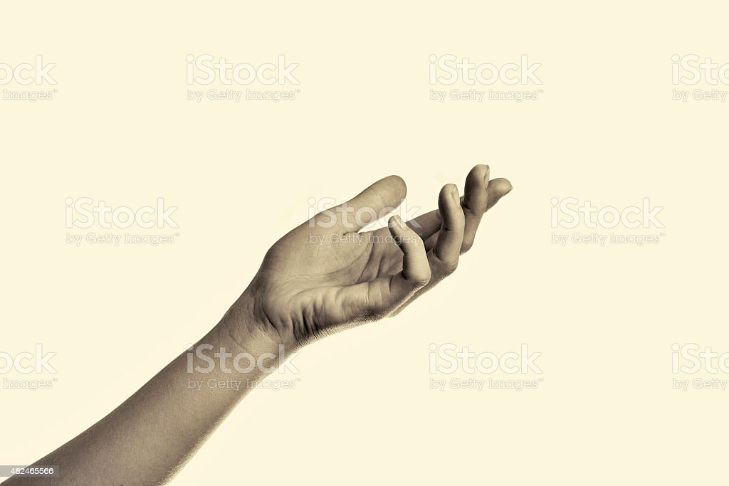 woman's hand stock photo