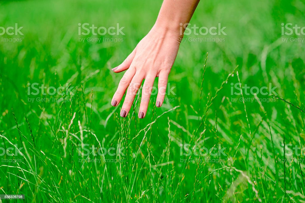 Woman's hand touching the grass, 'feeling nature' stock photo