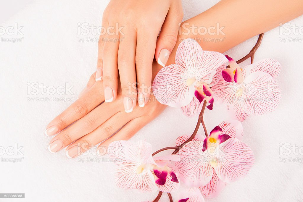 woman's hand with manicure and flower of orchid stock photo