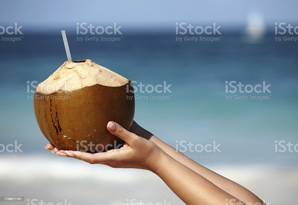 Woman`s hands holding coconut stock photo
