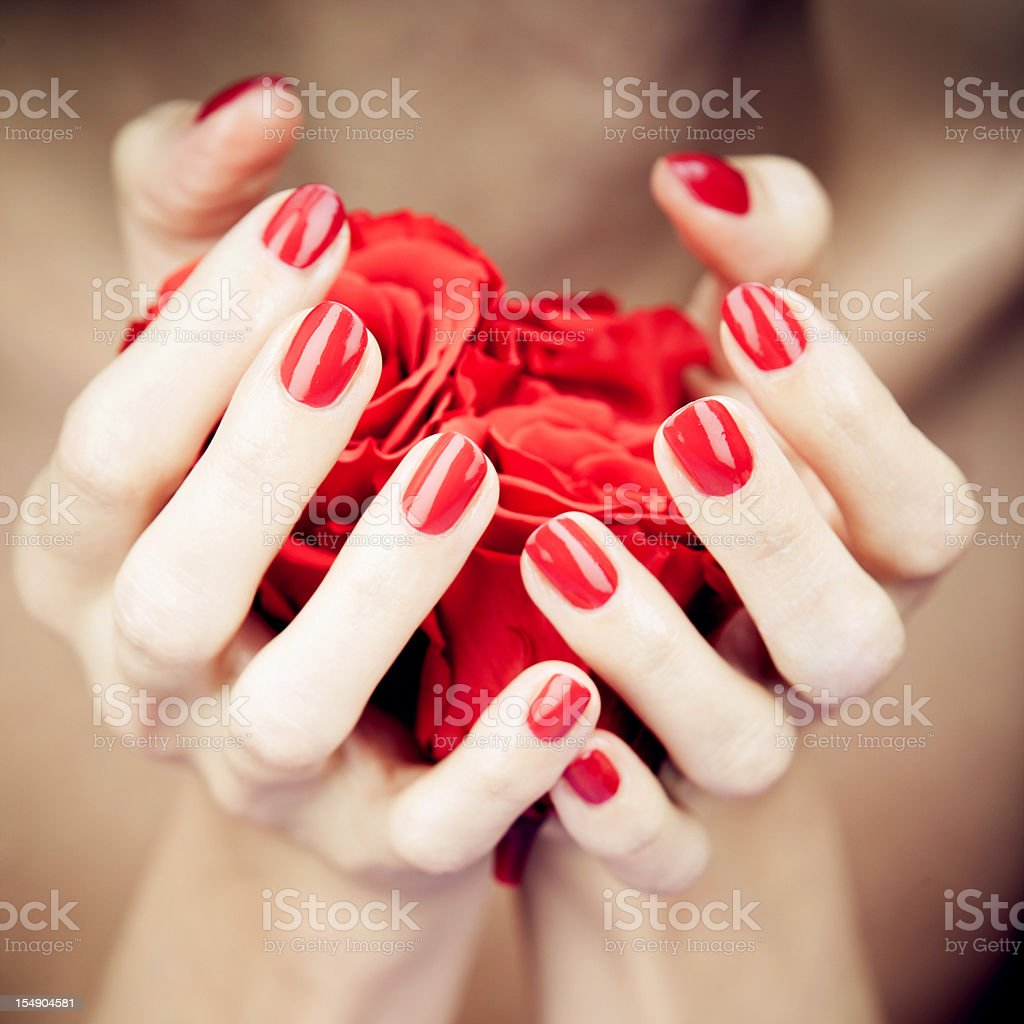 Woman's hands stock photo