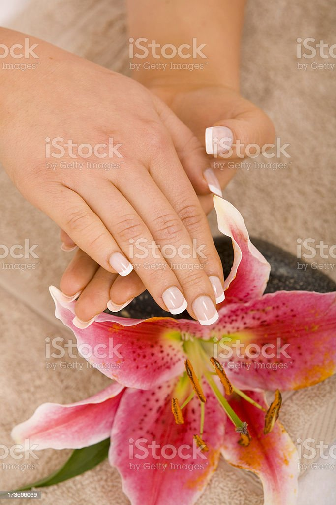 Woman's hands royalty-free stock photo