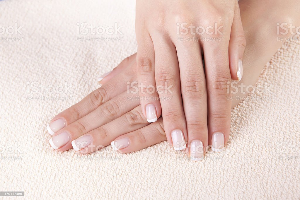 woman`s hands royalty-free stock photo