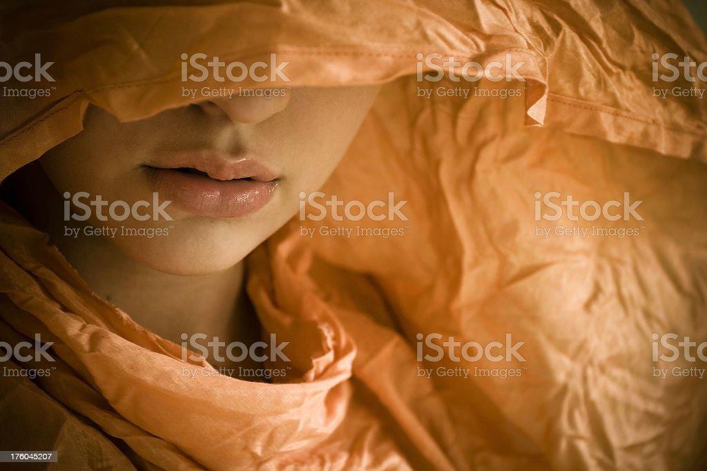 Woman's Veiled Face stock photo