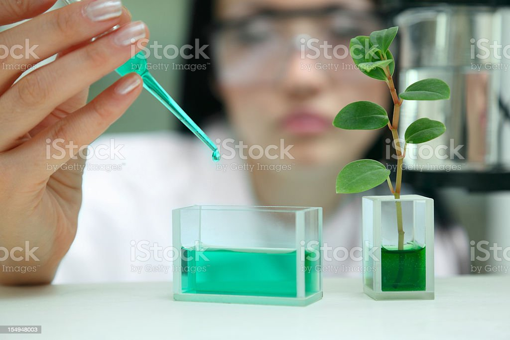 Woman-scientist works with liquid chemical agent stock photo
