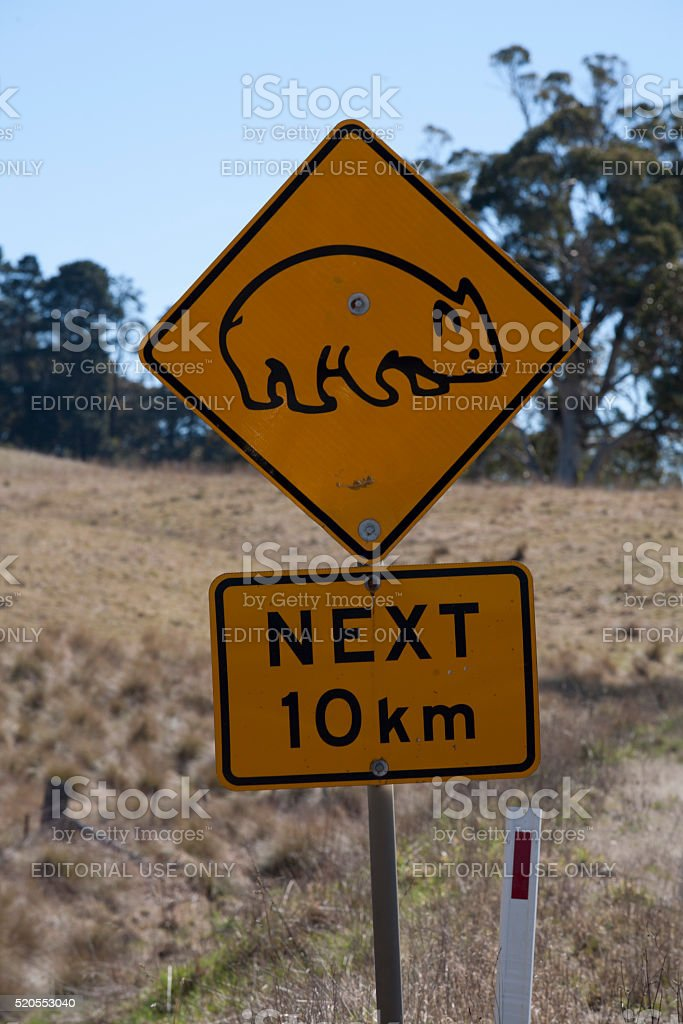 wombat road sign warning stock photo