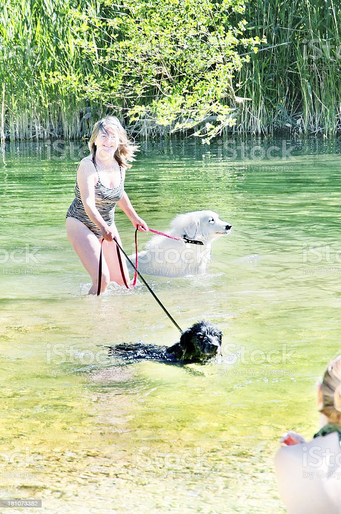 Women and dogs in river royalty-free stock photo