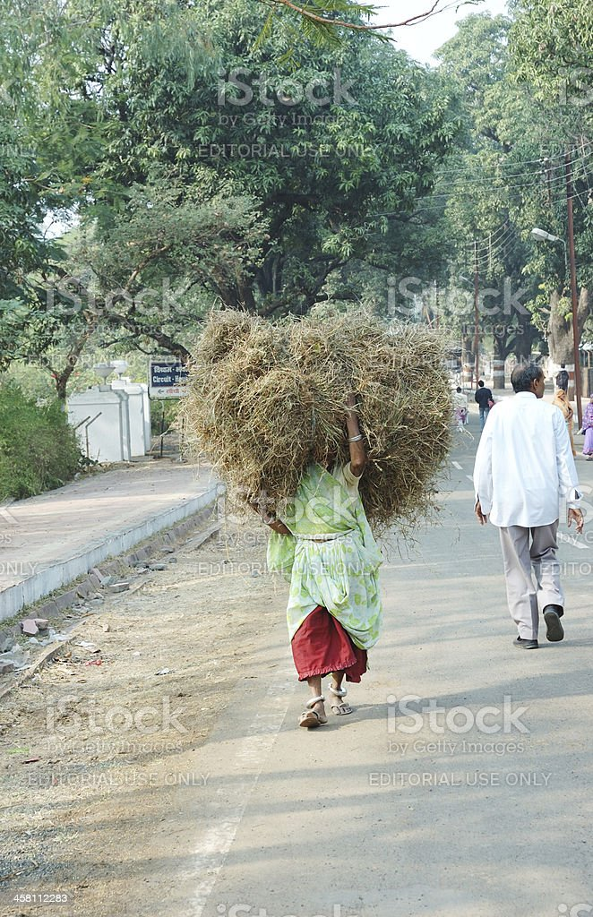 Women carrying hay for a living,India royalty-free stock photo