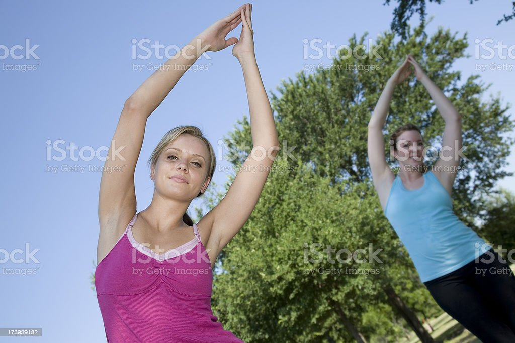 Women Doing Yoga Exercises in the Park royalty-free stock photo