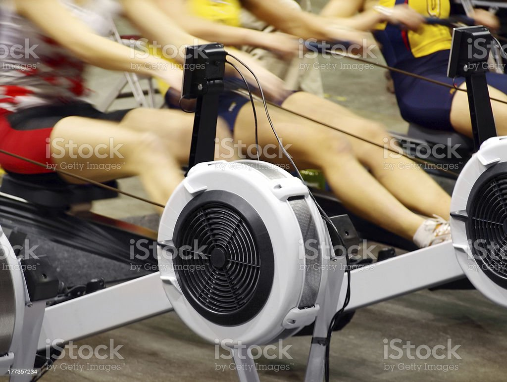 Women Exercising in the Gym royalty-free stock photo