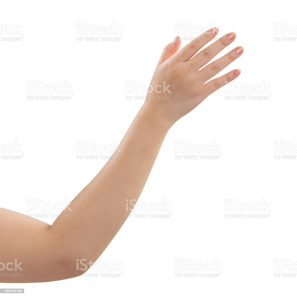 Women hand isolated on white background stock photo