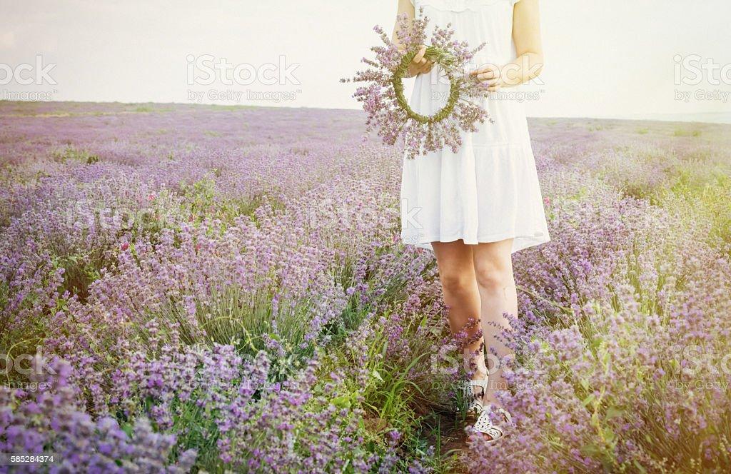 Women in lavender meadow stock photo