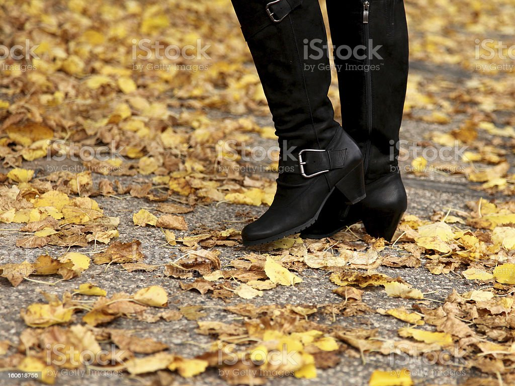 Women legs in knee-high boots and yellow fall leaves stock photo