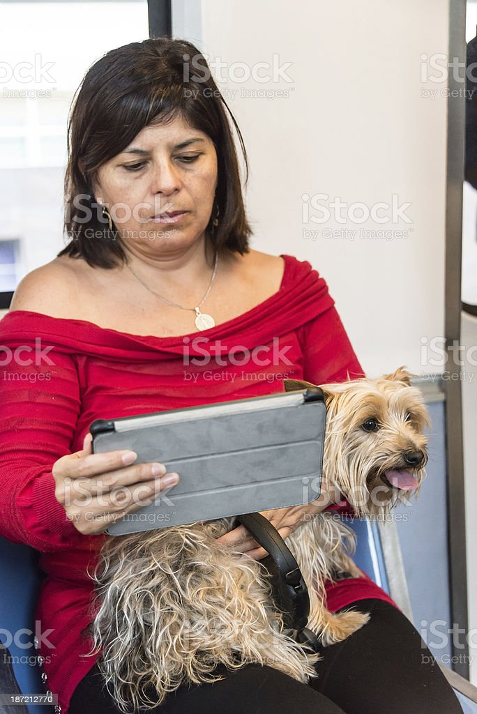 Women looking at her digital tablet royalty-free stock photo