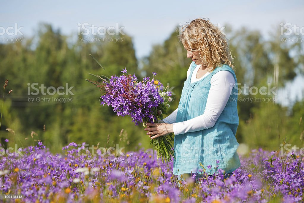 Women picking lilac flowers stock photo