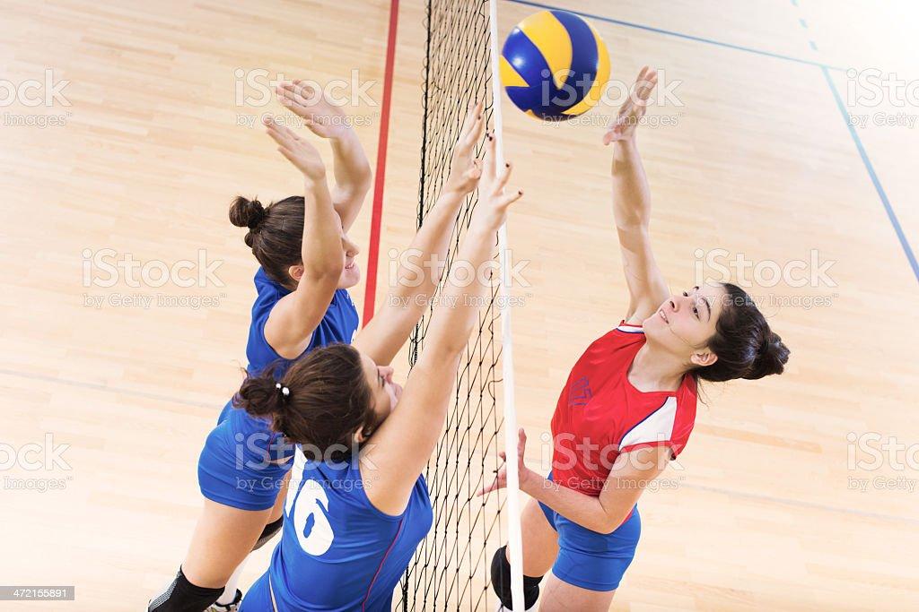 Women playing volleyball stock photo