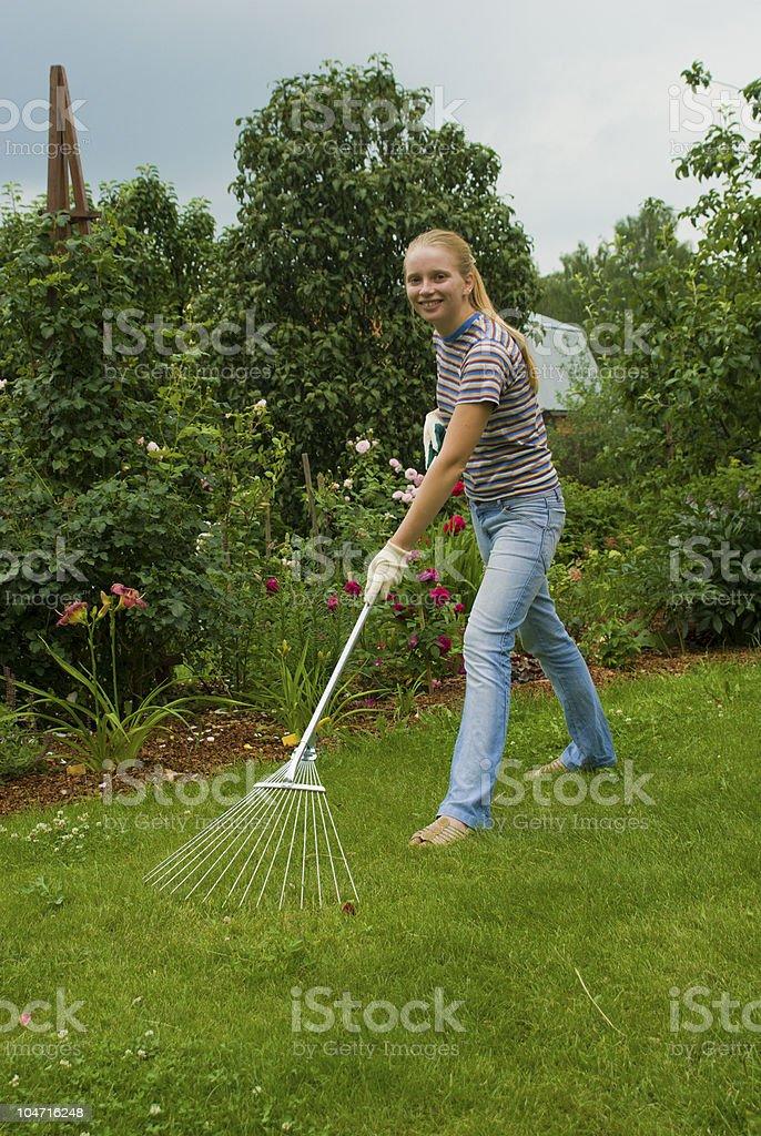 Women raking royalty-free stock photo