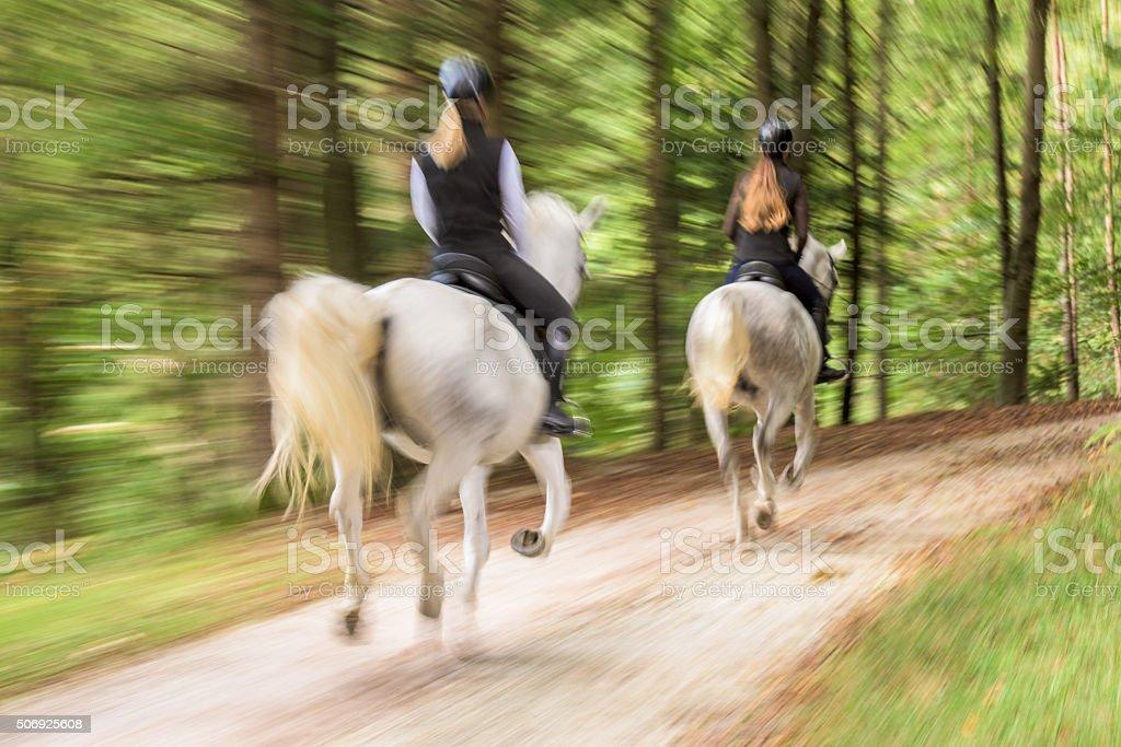 Women riding horses stock photo