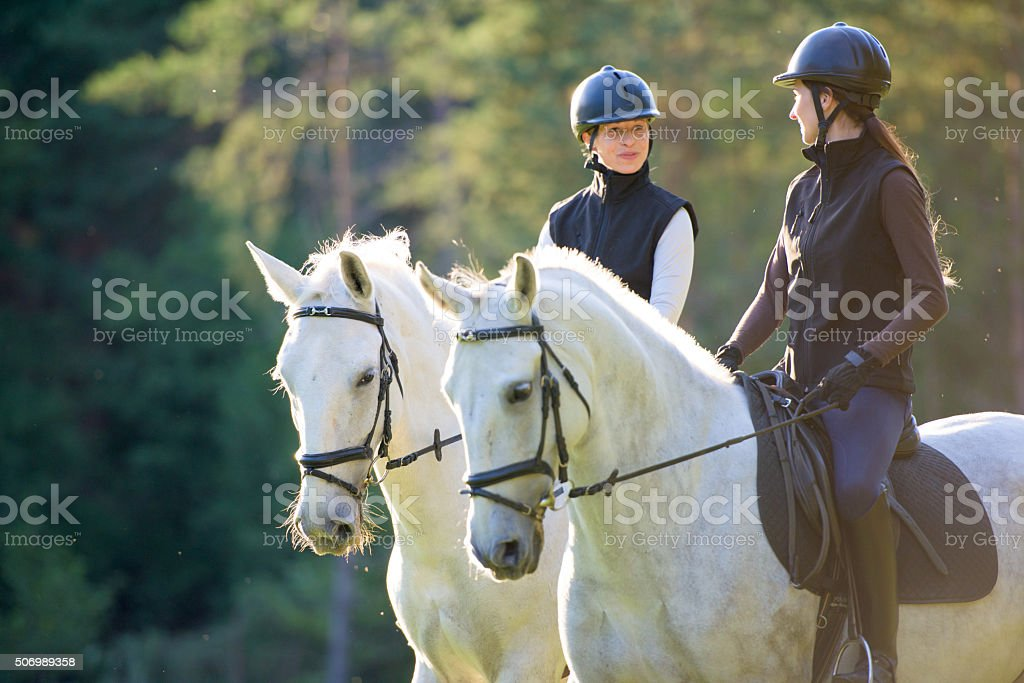 Women riding horses stock photo