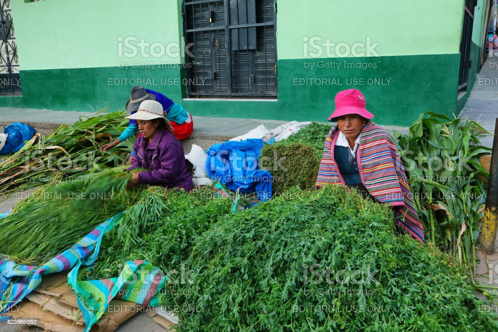 Women selling diferent plants in Yungay, Peru stock photo